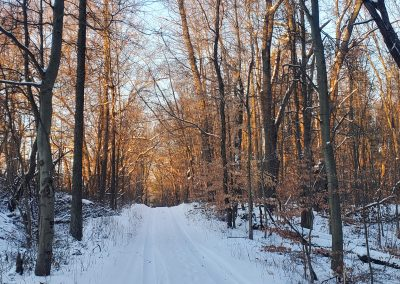 Pretty Lake Camp in the winter has snowshoe trails